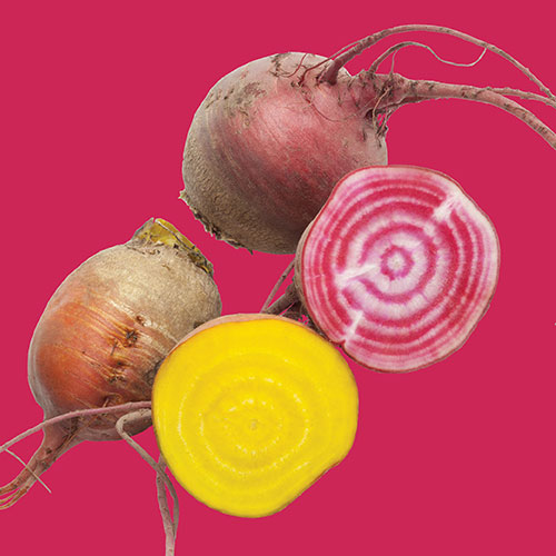 raw-product_Beet-Red-and-Gold