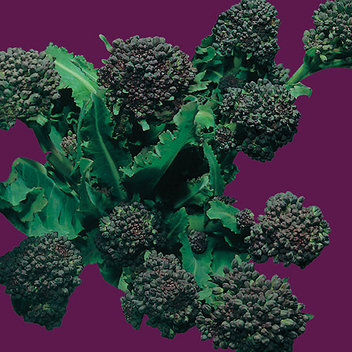 Broccoli. Raap