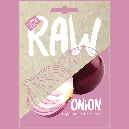 RAW Onion Cipollini Red / Yellow