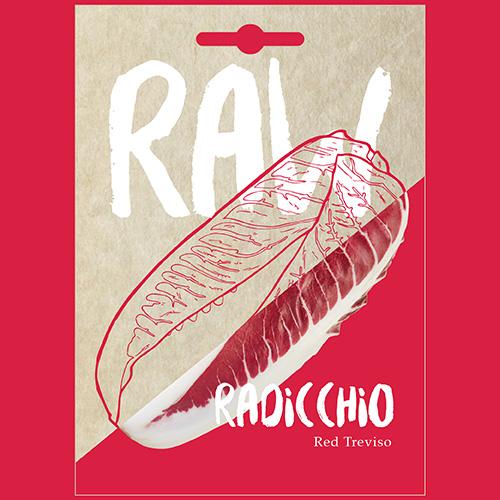 RAW Radicchio Red Treviso