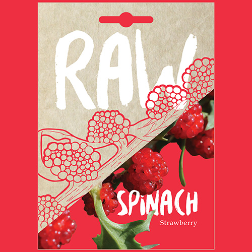 RAW Spinach Strawberry