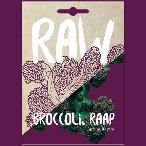 Broccoli. Raap Spring Rapini