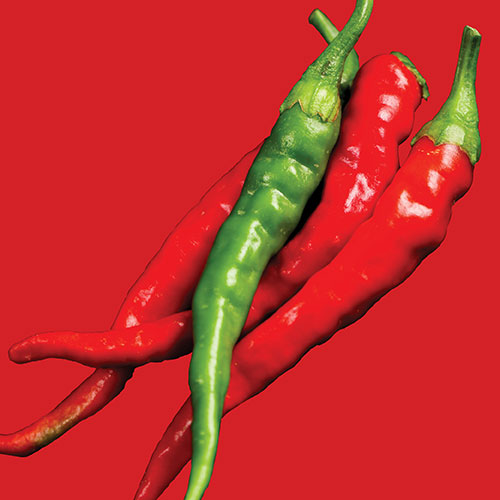 Pepper Chilli