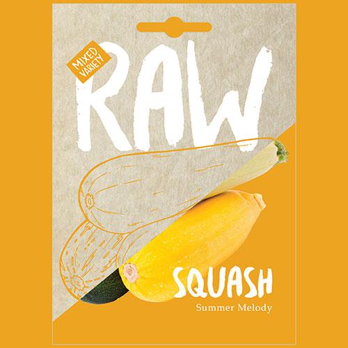 Squash Summer Melody
