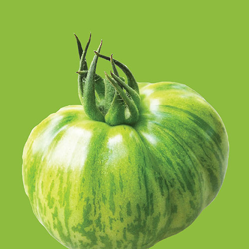 how to eat green zebra tomatoes